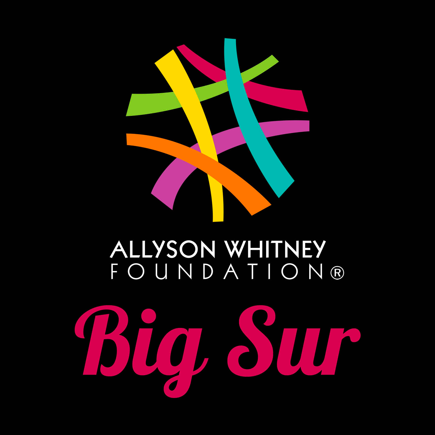 Allyson Whitney Foundation Big Sur